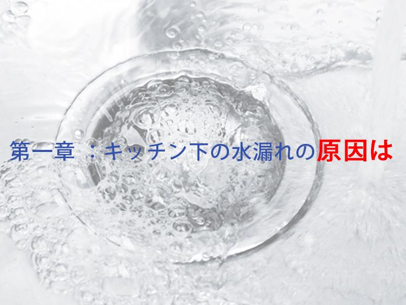 第一章:キッチン下の水漏れの原因は