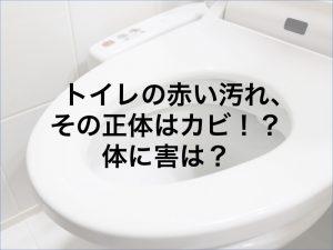 トイレの赤い汚れ、その正体はカビ!?体に害は?