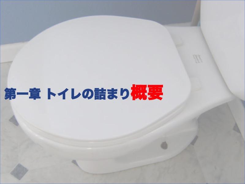第一章:トイレのつまり概要