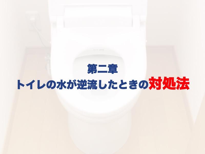 第ニ章:トイレの水が逆流したときの対処法