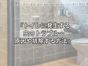 トイレに発生する虫のトラブル・・・原因や排除する方法