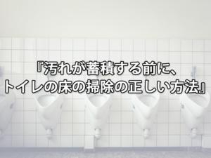 汚れが蓄積する前に、トイレの床の掃除の正しい方法