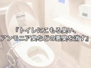 トイレにこもる臭い、アンモニア臭などの悪臭を消す方法
